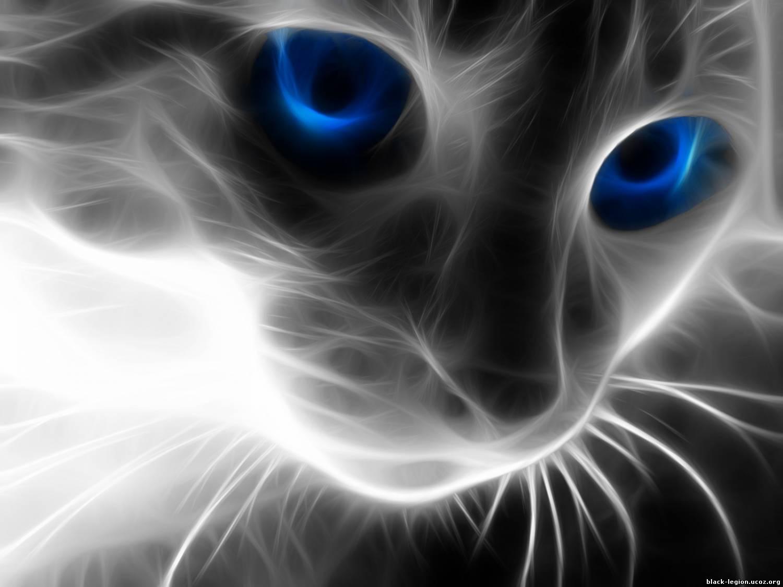 Кошки по знакам зодиака